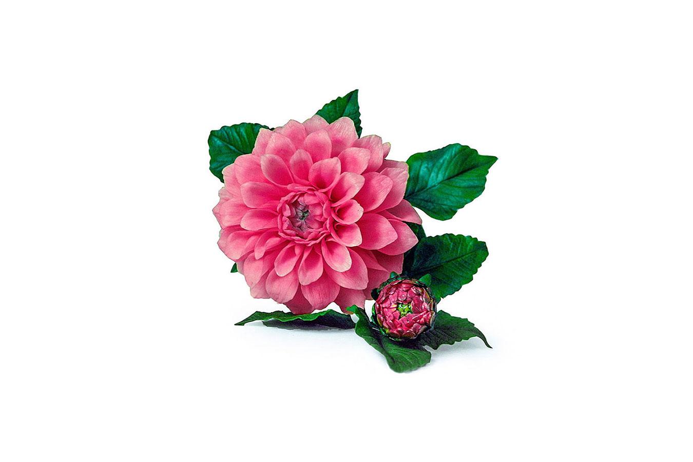 dalia rosa con bocciolo realizzata in porcellana fredda