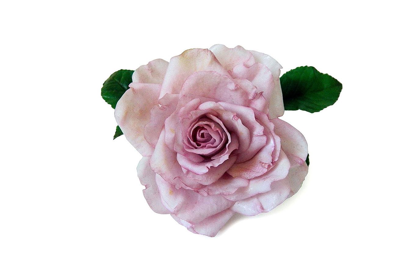 rosa con sfumatura rosa realizzata in porcellana fredda